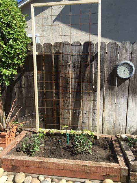 Diy Arbor Trellis by Simple Diy Garden Trellis Diy Done Right