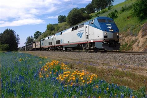 are amtrak trains comfortable 7 ways to travel cross country without a car