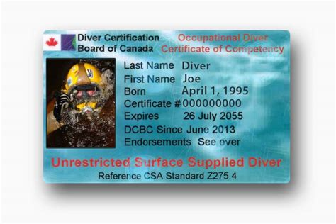 dive card course work for florida cda