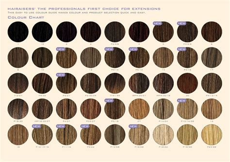 nice n easy hair color chart and easy hair color chart nice n easy color chart