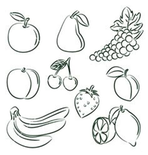 b fruit x dingbat 1000 images about drawing outlines on free