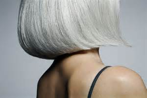 photos of gray hair with lowlights gray white hair and lowlights hairstylegalleries com