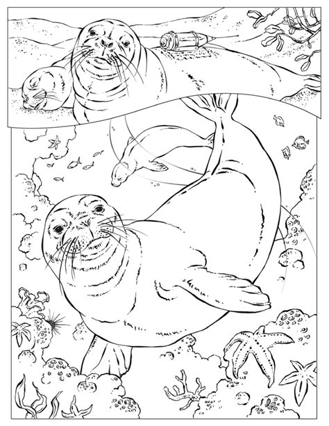 coloring pages animals national geographic national geographic coloring pages coloring home
