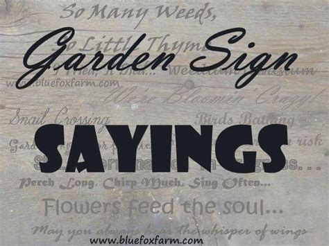 garden sign sayings funny quotes whimsical sayings