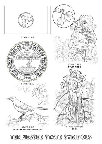 indiana state symbols coloring pages tennessee state symbols coloring page free printable