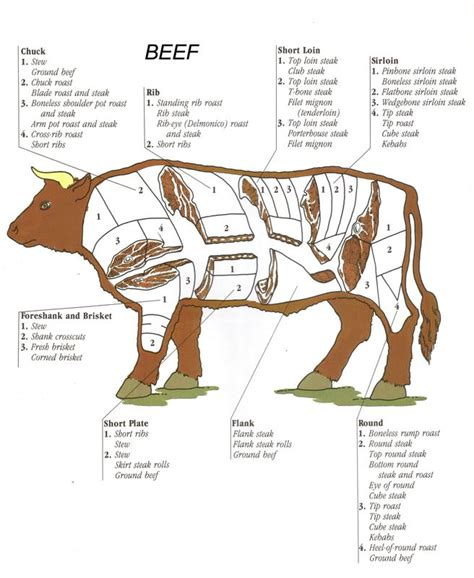beef sections chart playing with fire and smoke guide to meat cuts