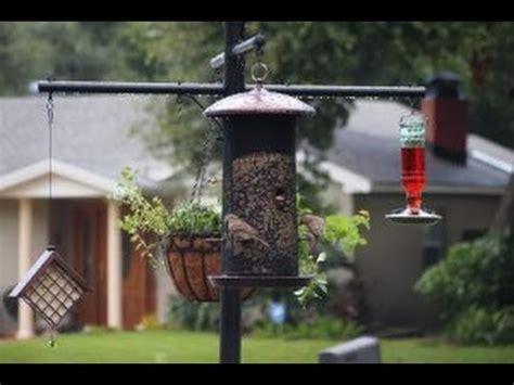 bear proof bird feeder traska | doovi