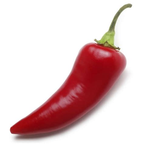 chili peppers japanese word of the day chili pepper noun
