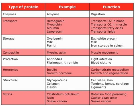 7 protein classes fitness and nutrition facts for a common