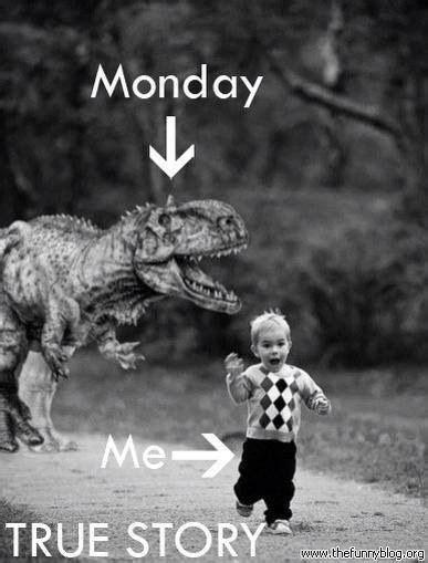 Monday Memes Funny - funny monday meme lighten up pinterest