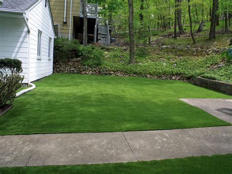 artificial turf albany california landscape ideas front