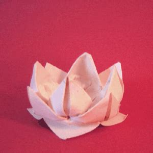 Lotus With Paper - paper flower lotus origami tutorial papermodeler