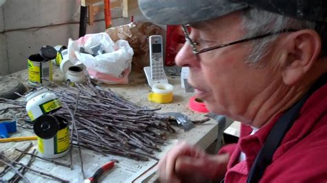 bench grafting apple trees bench grafting apple trees with whip tongue and bark grafts youtube