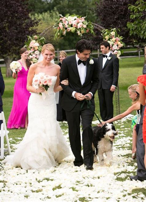 puppy wedding 18 best images about dogs in weddings on wedding dogs and the