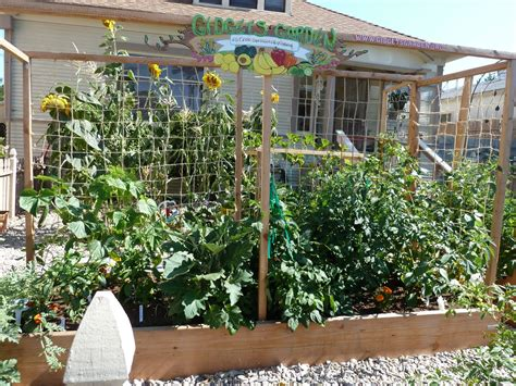 Vegetable Garden Ideas For Small Spaces Small Space Vegatable Gardening Home Decoration Ideas