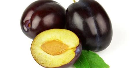 Buah Plum buah plum
