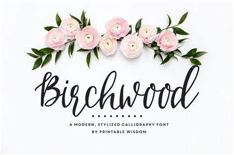 calligraphy font birchwood calligraphy font fonts on creative market