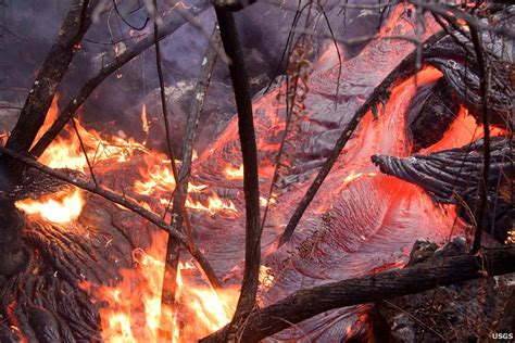 what s in a lava l image gallery lava burns