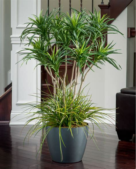 floor plants home decor deluxe yucca silk floor plant for business and home decor