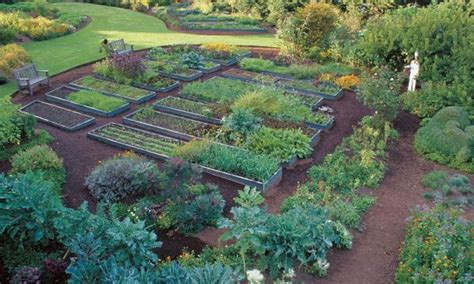 Vegetable Garden On A Slope 21 Best Images About Edible Garden Espaliered Fruit