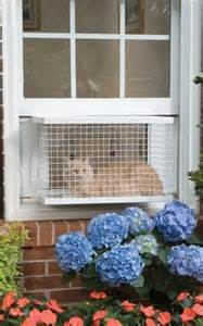 cat window box enclosure 301 moved permanently