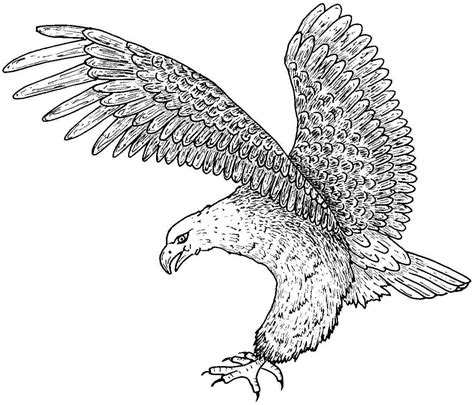 coloring pages american eagle free printable eagle coloring pages for kids