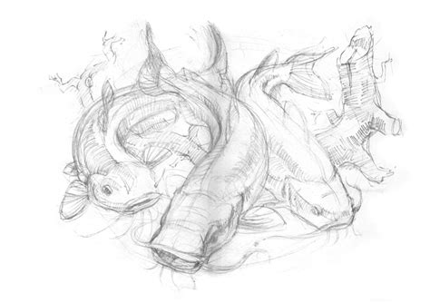 Sketches Channel by Catfish Sketch