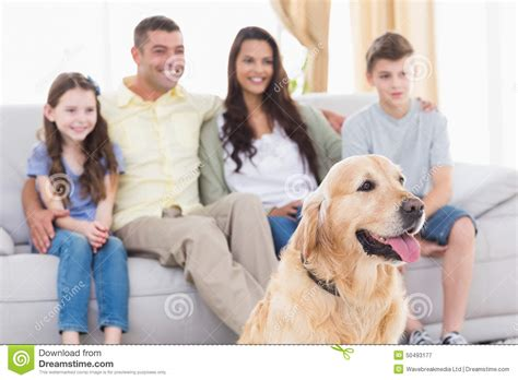 Xl Dog Sofa Family And Dog Watching Tv Together Stock Image Image