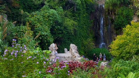 Tea Garden San Antonio by Japanese Tea Gardens In San Antonio Expedia