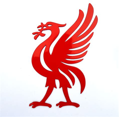 list of synonyms and antonyms of the word liverpool bird