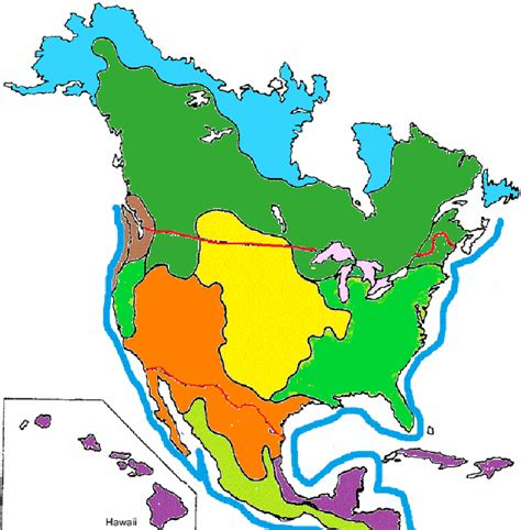 america map biome color the biomes of america