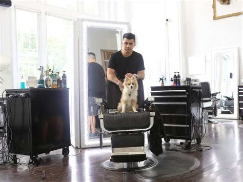 pomeranian breeders montreal dogs of montreal meet gucci mane montreal gazette