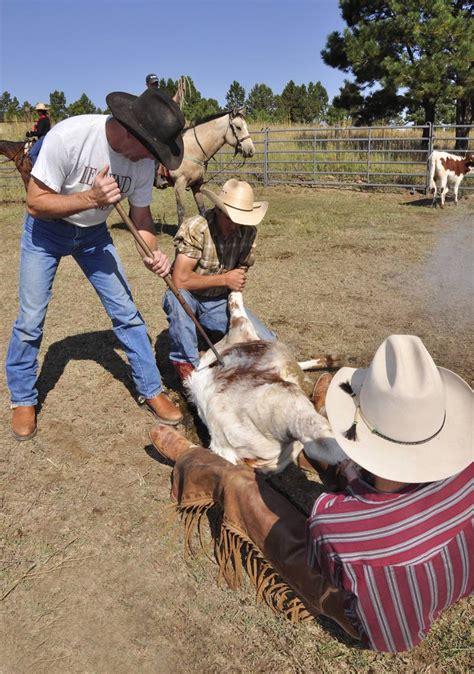 boat holdings llc brands dickinson cattle co llc gt home gt longhorn info