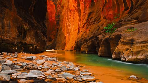 virgin river narrows zion national park  north america