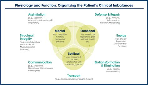 Lead Detox Functional Medicine by Functional Medicine What Is It How Does It Work Why