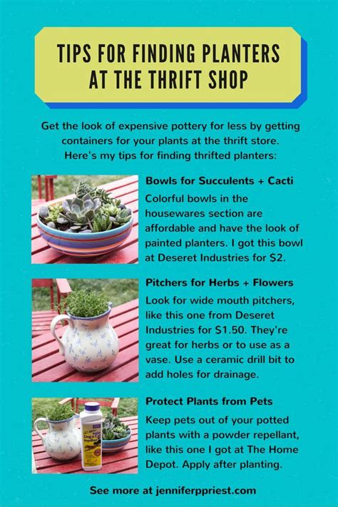 Especially For Thrifty Boutique by How To Find Planters At The Thrift Store Tour Of The New