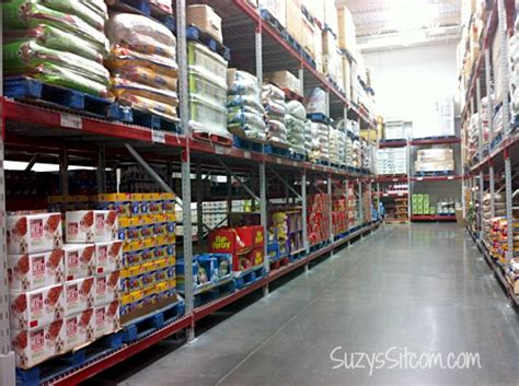 sams club dogs abandoned pets how you and pedigree food can help