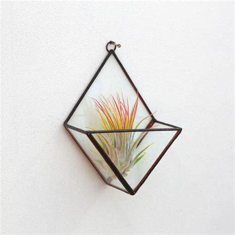 Terrarium Kaca Glass Terrariums Triangle geometric glass triangle wall terrarium by paly glass