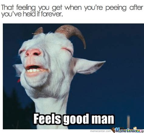 Pee Meme - that feeling you get when you re peeing after you ve held