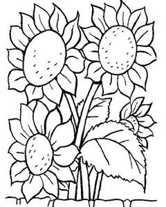 awesome sun flower coloring download amp print coloring pages free color nimbus