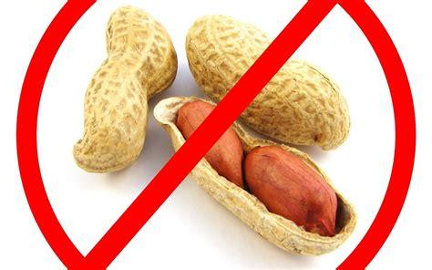 allergia alimentare allergie alimentaire quelles pr 233 cautions prendre