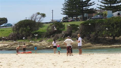 layout beach ultimate tournament surf n turf ultimate frisbee tournament held at narooma