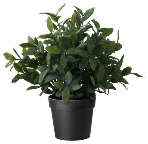 ikea fake trees kedyrolo llc ikea artificial potted plant 9 5 quot artificial flowers plants and trees houzz