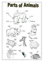 printable animal body parts english worksheets parts of animals picture dictionary