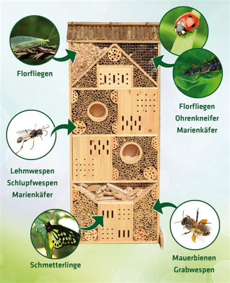 Material F R Insektenhotel 3682 by Insektenhotel