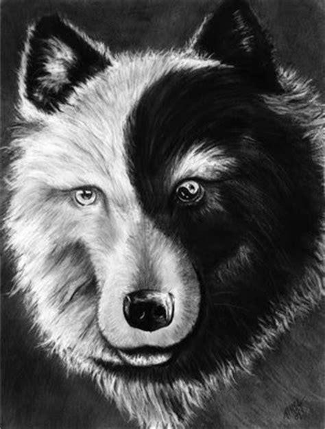 imagenes lobo negro it s good to feel good lobo negro lobo blanco leyenda