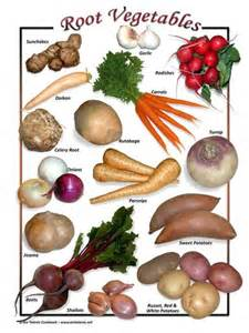 What Is Root Vegetables - eat root veggies during mercury retrograde types of root vegetables lightworker pinterest