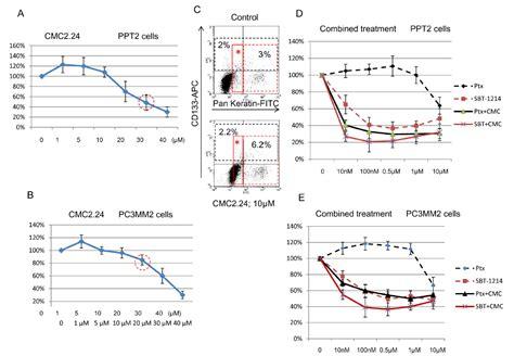 bcas2 promotes prostate cancer cells proliferation by stony brook university