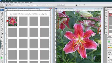 how to use e z collage sheet templates in photoshop