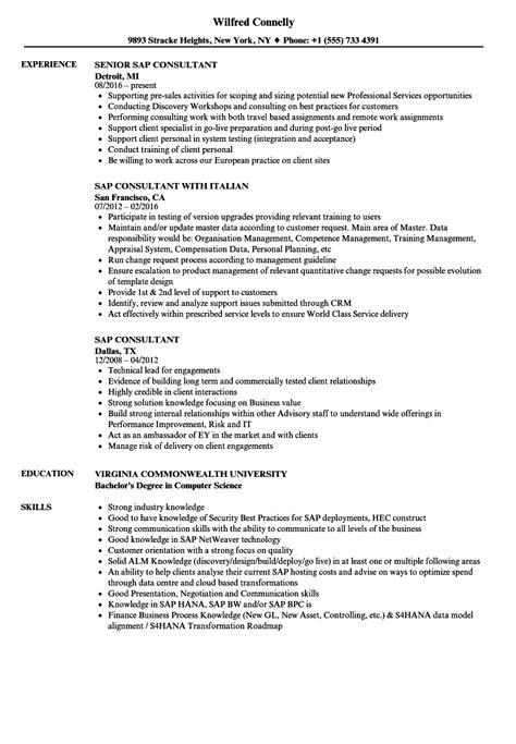 sap consultant resume sles velvet